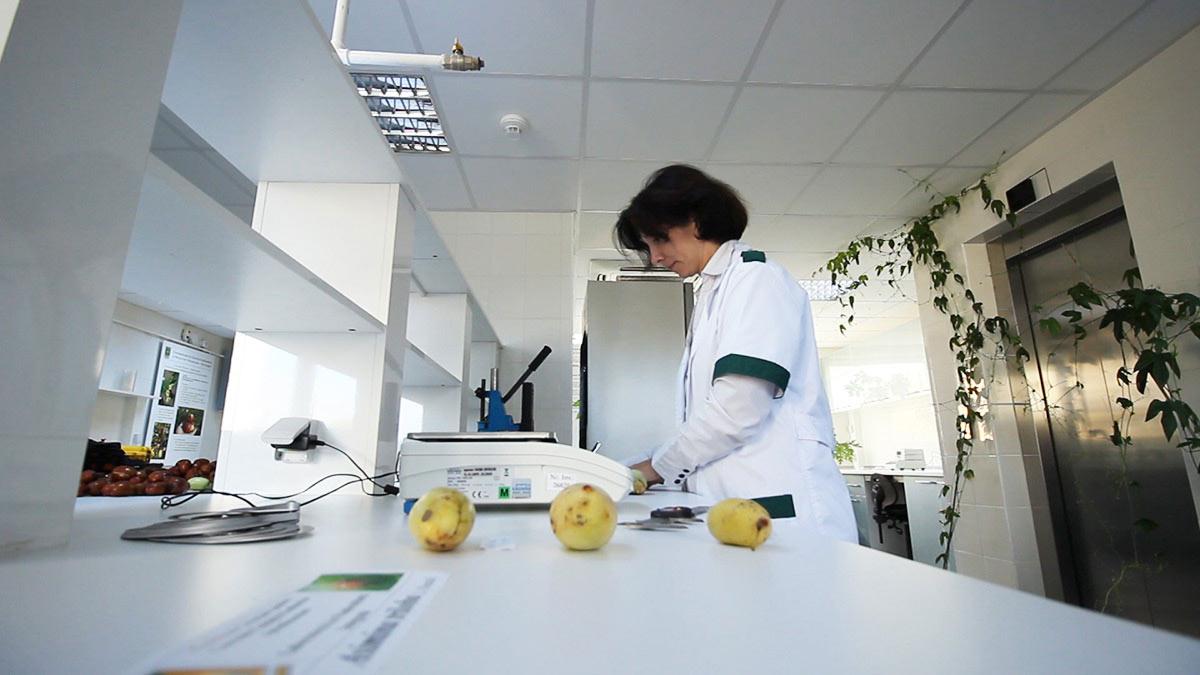 Laboratorul de Pomicultura