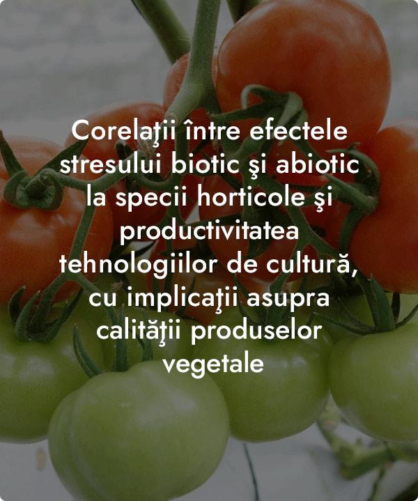 Corelatii