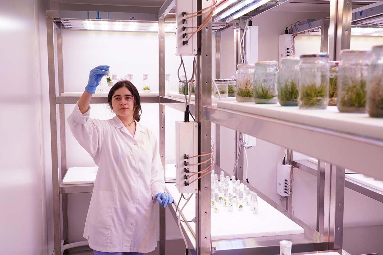 Laborator de fiziologie vegetala moleculara